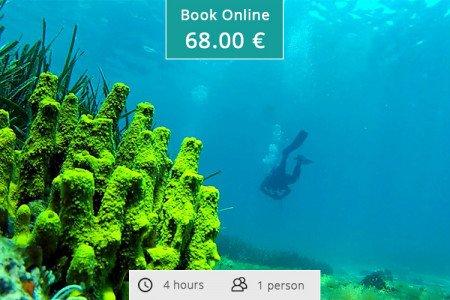 Scuba Diving in Kassandra Halkidiki