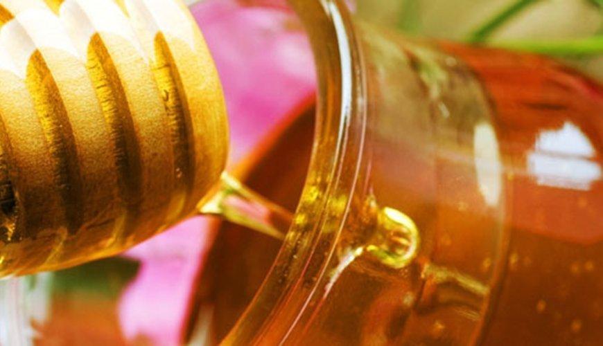 Traditional Products - Honey Halkidiki